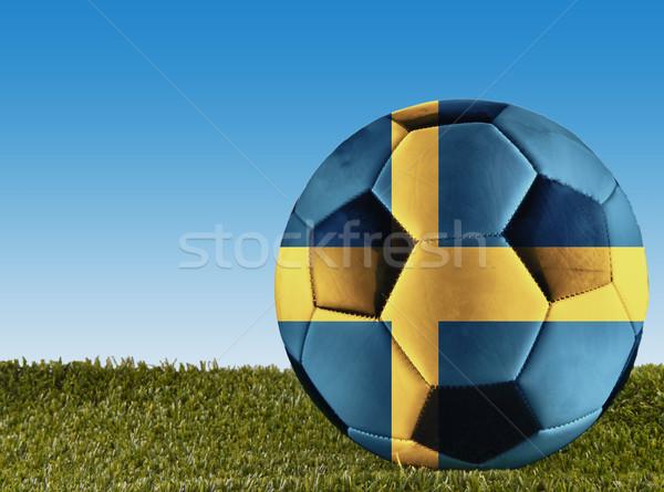 Zweden voetbal gras ingericht vlag voetbal Stockfoto © Koufax73