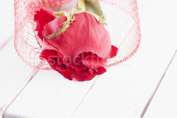 красную розу белый древесины горизонтальный изображение бумаги Сток-фото © Koufax73