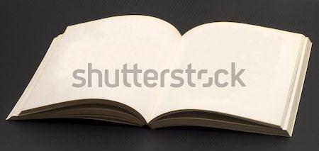 Book Stock photo © Koufax73
