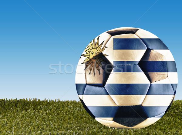 Uruguay futball fű díszített zászló futball Stock fotó © Koufax73