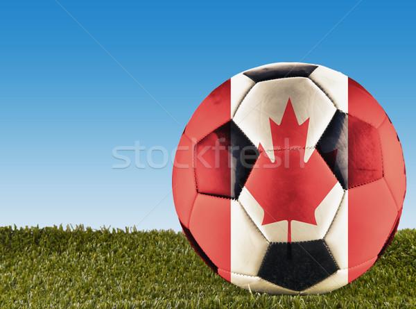 Canadian football Stock photo © Koufax73