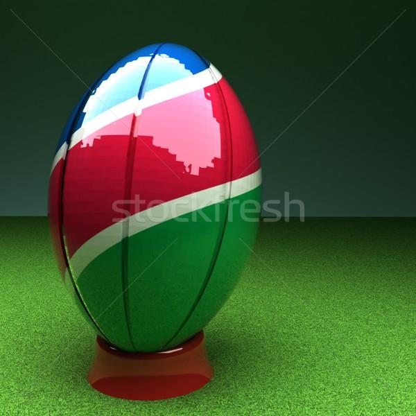 ナミビア ラグビー ラグビーボール フラグ 緑の草 フィールド ストックフォト © Koufax73