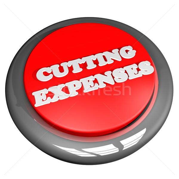Cutting expenses button Stock photo © Koufax73