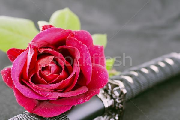 Rose and katana Stock photo © Koufax73