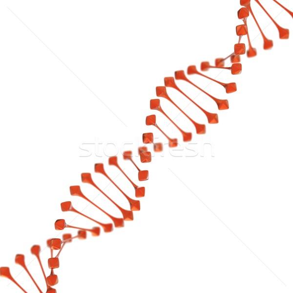 DNA beyaz teknoloji tıp bilim kimya Stok fotoğraf © koya79