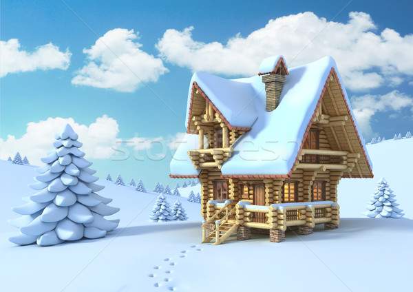winter or Christmas outdoor scene Stock photo © koya79