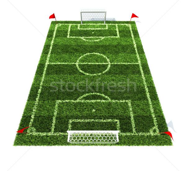 Futballpálya 3d illusztráció izolált fehér textúra iskola Stock fotó © koya79