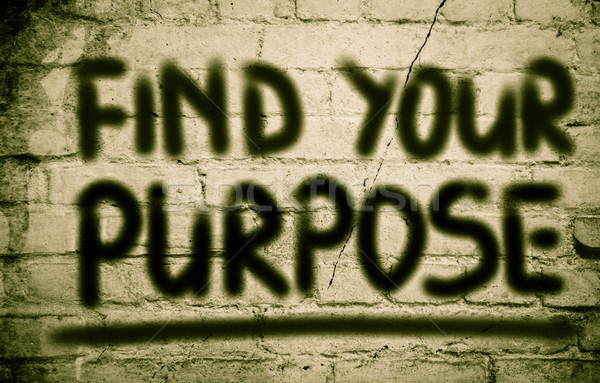 Find Your Purpose Concept Stock photo © KrasimiraNevenova