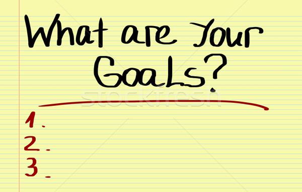 What Are Your Goals Concept Stock photo © KrasimiraNevenova