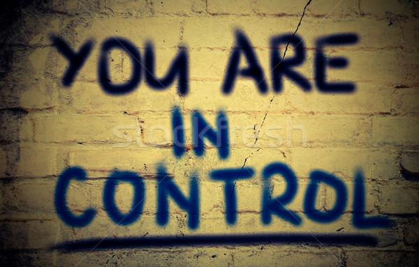 You Are In Control Concept Stock photo © KrasimiraNevenova