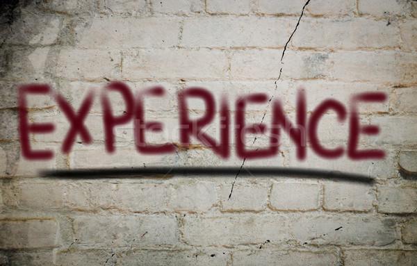 Deneyim çalışmak sanayi profesyonel destek yönetim Stok fotoğraf © KrasimiraNevenova