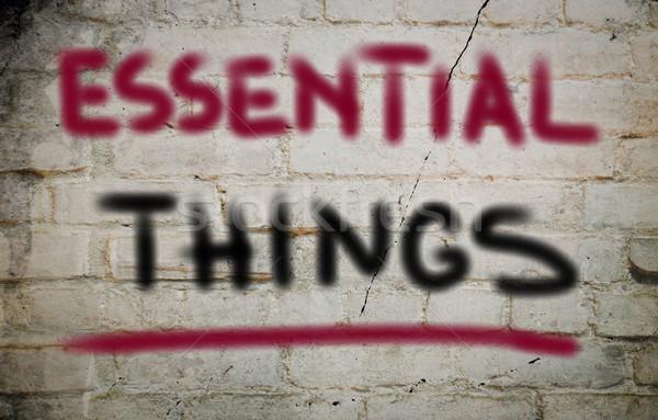 Essential Things Concept Stock photo © KrasimiraNevenova