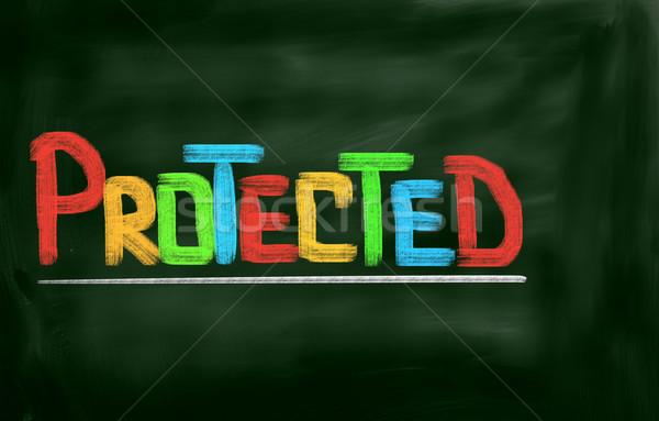 Protected Concept Stock photo © KrasimiraNevenova