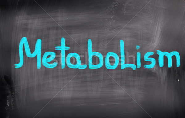 Metabolism Concept Stock photo © KrasimiraNevenova