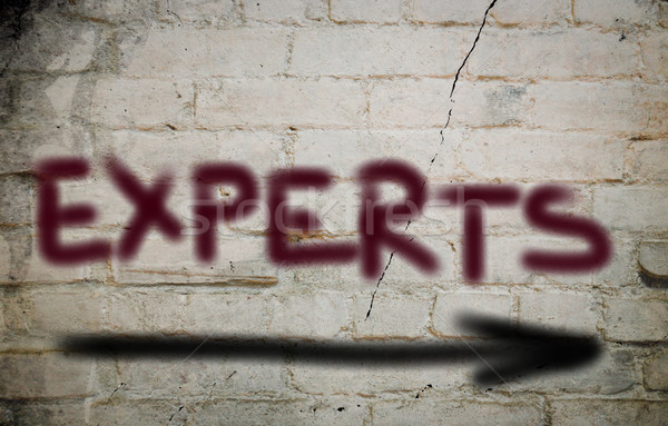 Experts Concept Stock photo © KrasimiraNevenova