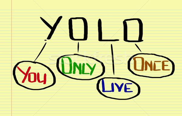 You Only Live Once Concept Stock photo © KrasimiraNevenova