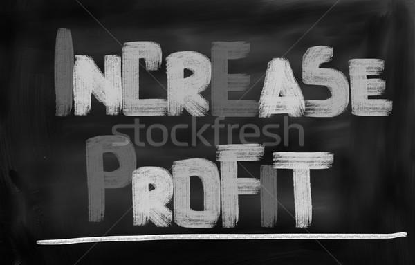 Increase Profit Concept Stock photo © KrasimiraNevenova