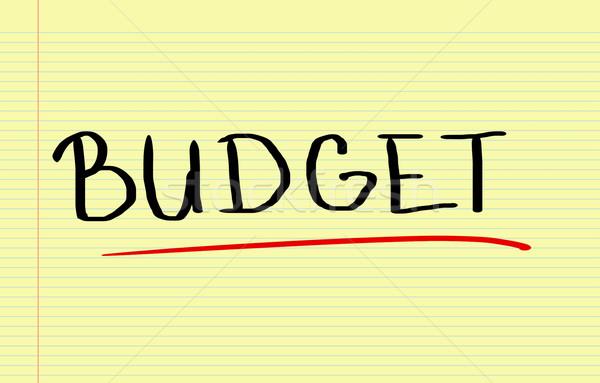 Budget Concept Stock photo © KrasimiraNevenova