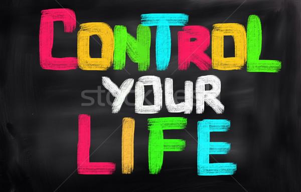 Controle leven succes bedrijf zorg plan Stockfoto © KrasimiraNevenova