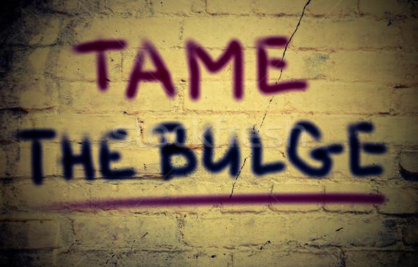Tame The Bulge Concept Stock photo © KrasimiraNevenova