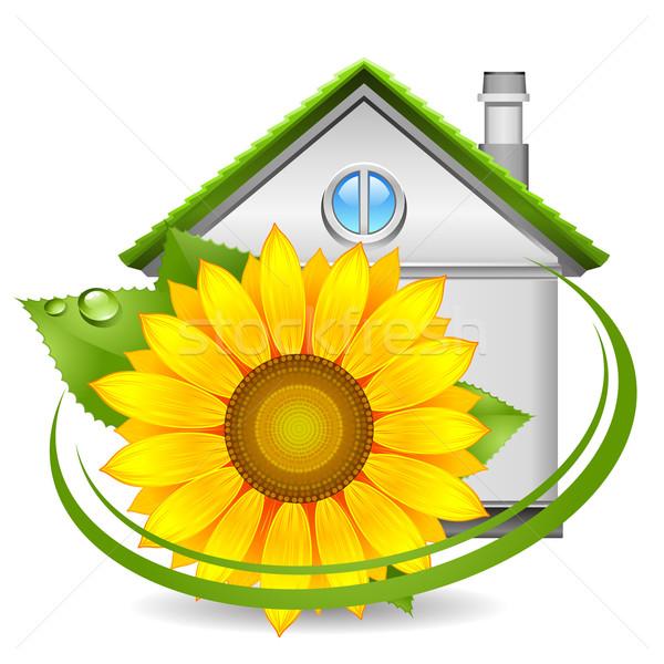 ícone casa casa folha verde Foto stock © kraska