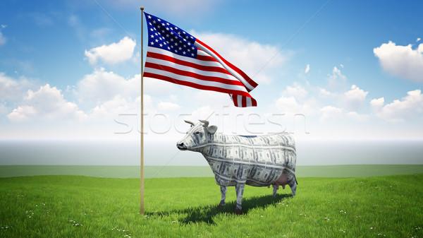 наличных корова Постоянный зеленая трава области американский флаг Сток-фото © kravcs