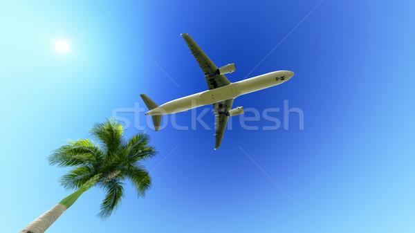 Vliegtuig palmboom witte vliegtuig blauwe hemel vliegen Stockfoto © kravcs