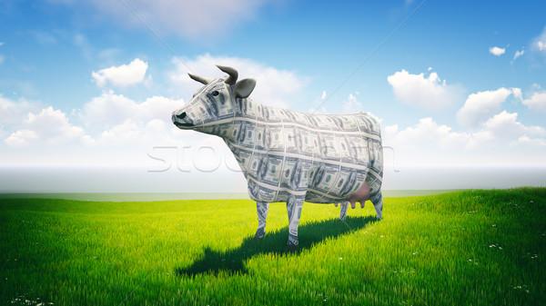 наличных корова Постоянный пышный зеленый области Сток-фото © kravcs
