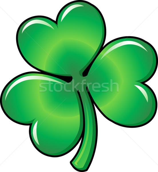 Ilustração shamrock trevo verde folha praça Foto stock © Krisdog