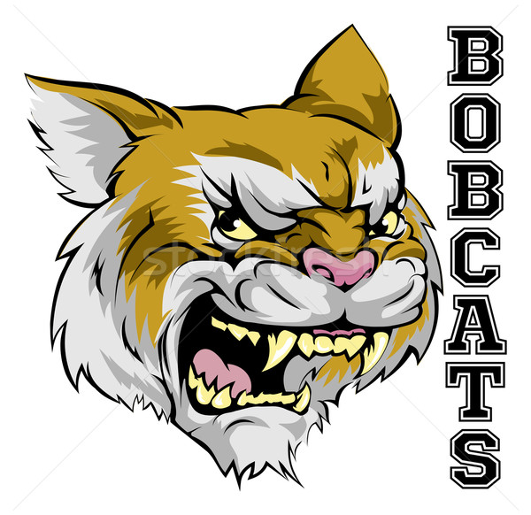 Mascota ilustración Cartoon equipo deportivo texto Foto stock © Krisdog
