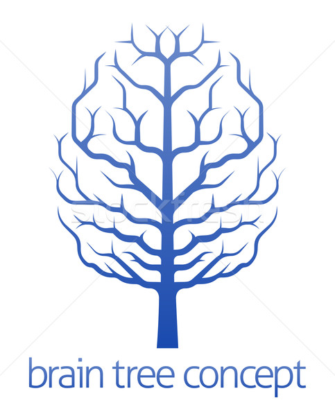 Brain tree of knowledge concept Stock photo © Krisdog