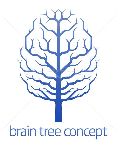 Cervello albero conoscenza illustrazione crescita Foto d'archivio © Krisdog