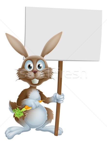 Desenho animado coelho rabino cenoura assinar Foto stock © Krisdog