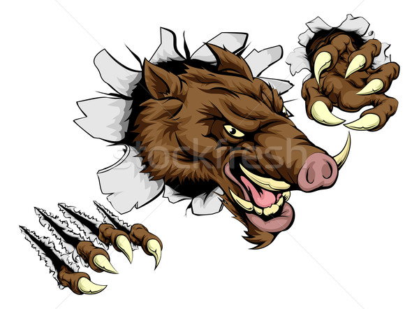 Boar mascot breaking through wall Stock photo © Krisdog