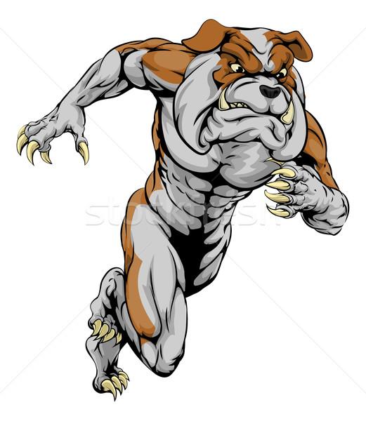 Bulldog sports mascot running Stock photo © Krisdog