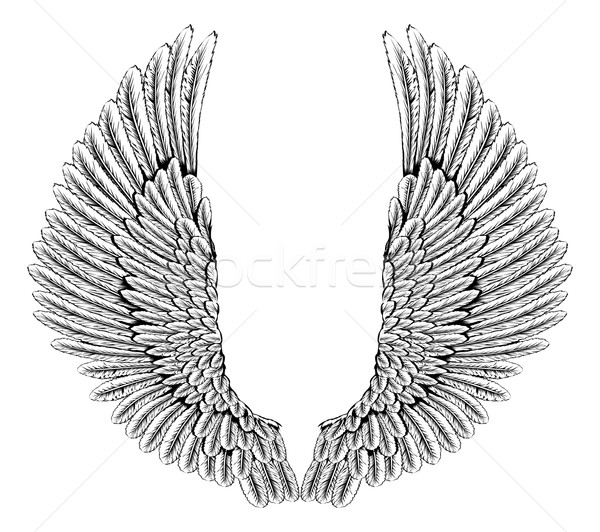 Aigle ailes d'ange illustration paire ange ailes Photo stock © Krisdog