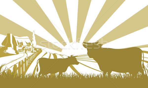 Cattle farm scene Stock photo © Krisdog