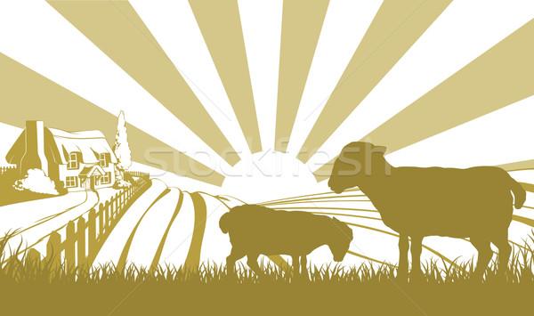 Sheep farm scene Stock photo © Krisdog