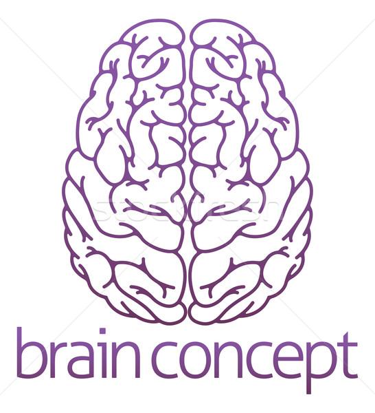 Abstract illustration of a brain Stock photo © Krisdog