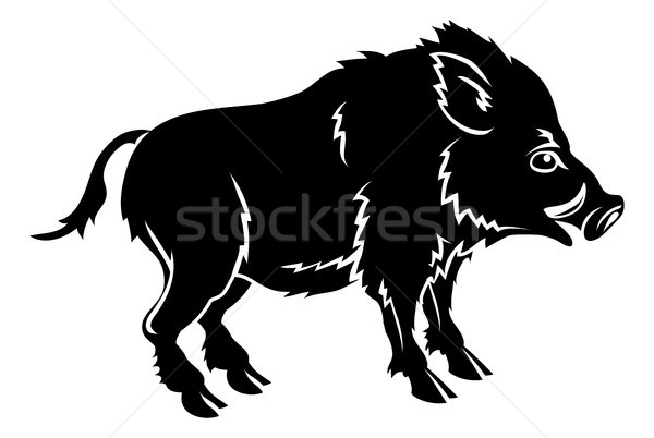 Stock photo: Stylised boar illustration