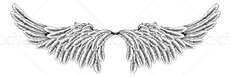 Wings Stock photo © Krisdog