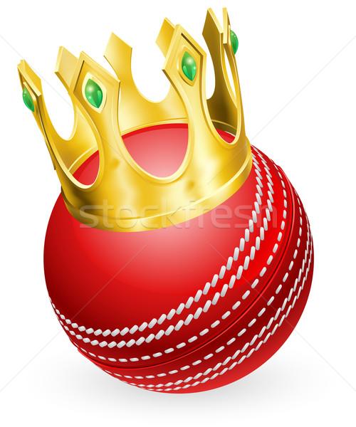 King of cricket Stock photo © Krisdog