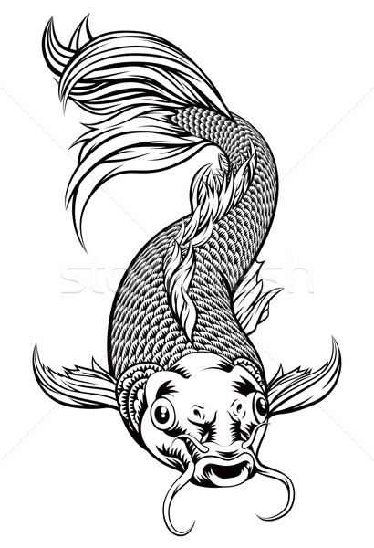 Koi Carp Fish Stock photo © Krisdog