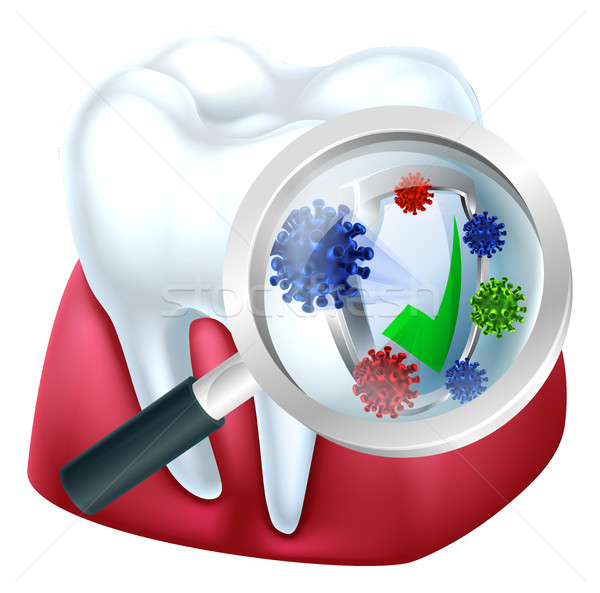 Protected Tooth and Gum Concept Stock photo © Krisdog