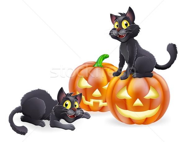Halloween cats and pumpkins Stock photo © Krisdog