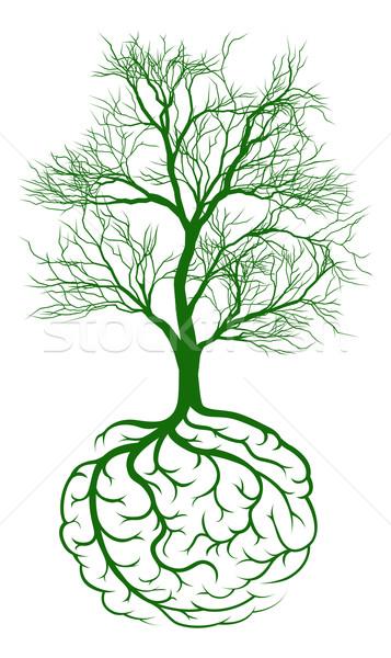 Stockfoto: Wortel · hersenen · boom · groeiend · zoals