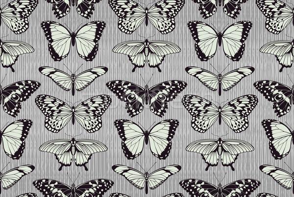 Butterfly pattern background Stock photo © Krisdog