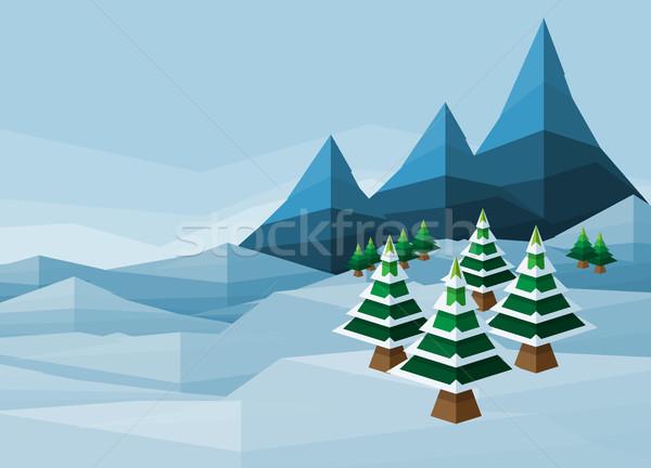 Polígono Navidad nieve invierno mundo maravilloso paisaje Foto stock © Krisdog