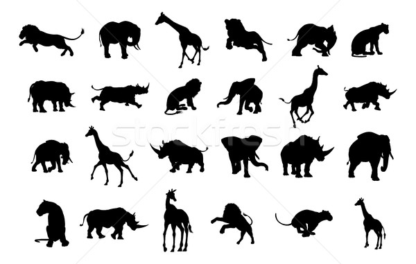 African Safari Animal Silhouettes Stock photo © Krisdog