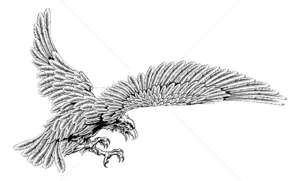 Swooping eagle Stock photo © Krisdog